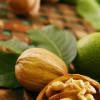 Как вырастить грецкий орех?