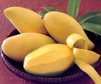 Как выбрать манго?